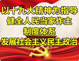 以十九大精神为指导 健全人民当家作主制度体系 发展社会主义民主政治