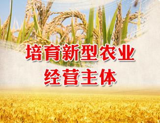 培育新型农业经营主体