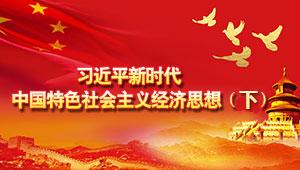 习近平新时代中国特色社会主义经济思想(下)