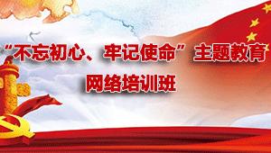 """""""不忘初心、牢记使命""""主题教育网络培训班"""