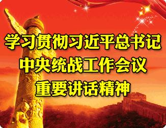 学习贯彻习近平总书记中央统战工作会议重要讲话精神