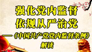 强化党内监督 依规从严治党——《中国共产党党内监督条例》解读
